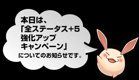 全ステータス+5強化アップキャンペーン開催!!